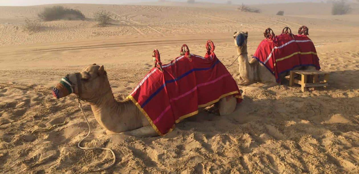 Blog assurance expatriation Dubai 2